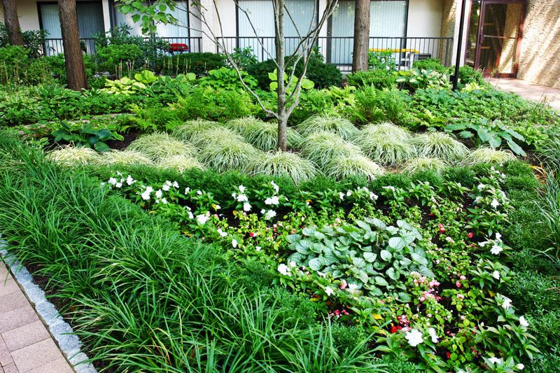 front-entrance-garden