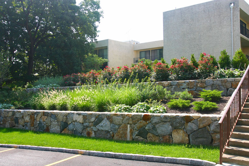 rose-garden-with-with-tiered-fieldstone-walls